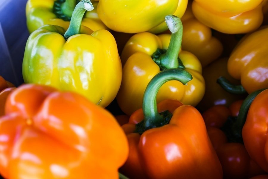 bell peppers low carb diet