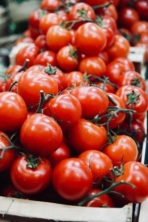 tomatoes low carb